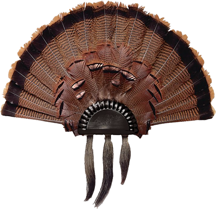 Lohman Turkey Fan Plaque Black