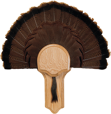 Deluxe Turkey Display Kit Oak