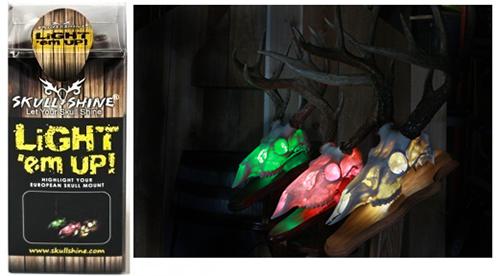 Light Kit for Animal Skulls
